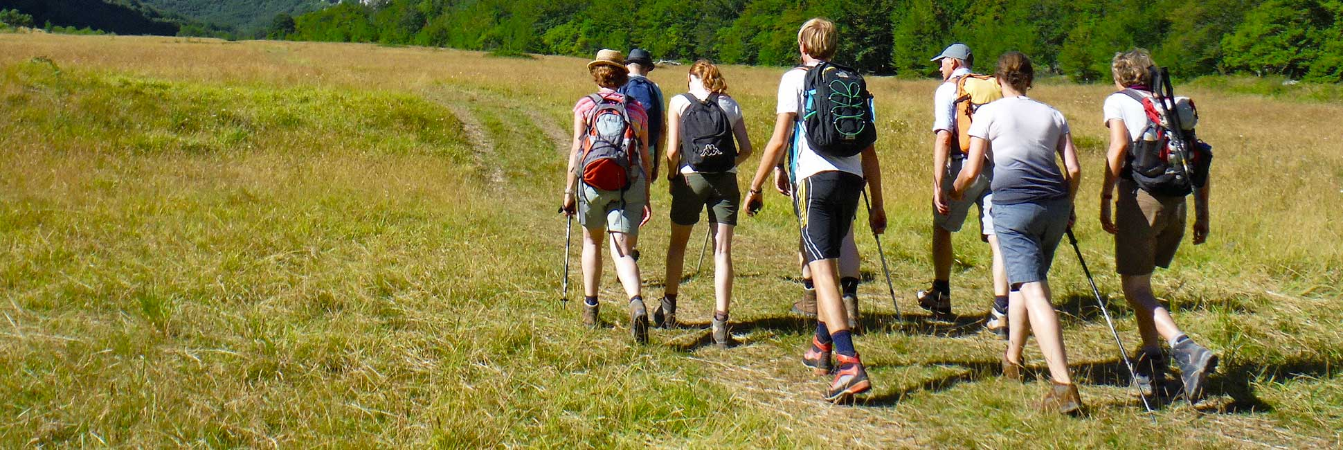 wandelcoaching-1-Sviluppa-Training,-Coaching-en-Persoonlijke-Ontwikkeling